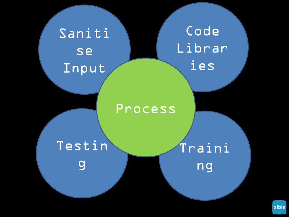 Saniti se Input Code Librar ies Traini ng Testin g Process