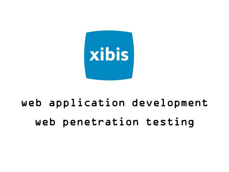 web application development web penetration testing
