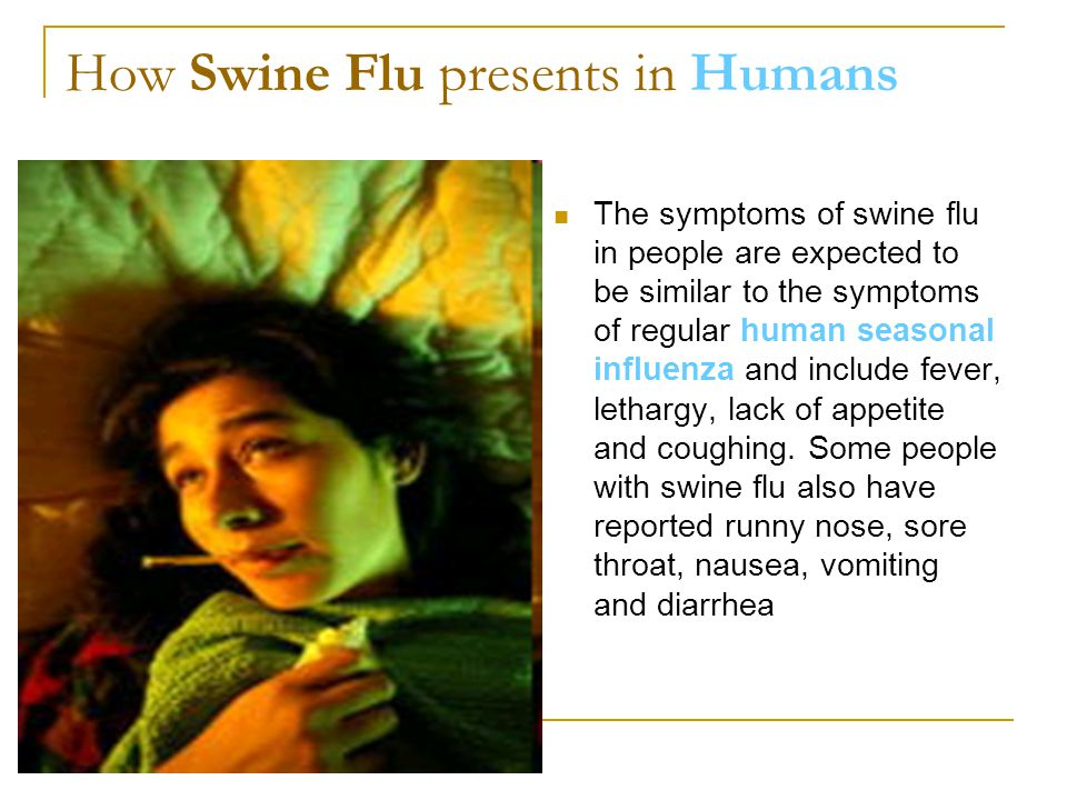 How Swine Flu presents in Humans The symptoms of swine flu in people are expected to be similar to the symptoms of regular human seasonal influenza an