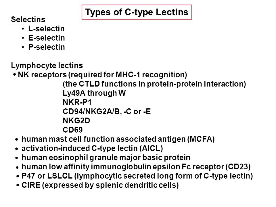 Selectins L-selectin E-selectin P-selectin Lymphocyte lectins NK receptors (required for MHC-1 recognition) (the CTLD functions in protein-protein interaction) Ly49A through W NKR-P1 CD94/NKG2A/B, -C or -E NKG2D CD69 human mast cell function associated antigen (MCFA) activation-induced C-type lectin (AICL) human eosinophil granule major basic protein human low affinity immunoglobulin epsilon Fc receptor (CD23) P47 or LSLCL (lymphocytic secreted long form of C-type lectin) CIRE (expressed by splenic dendritic cells) Types of C-type Lectins
