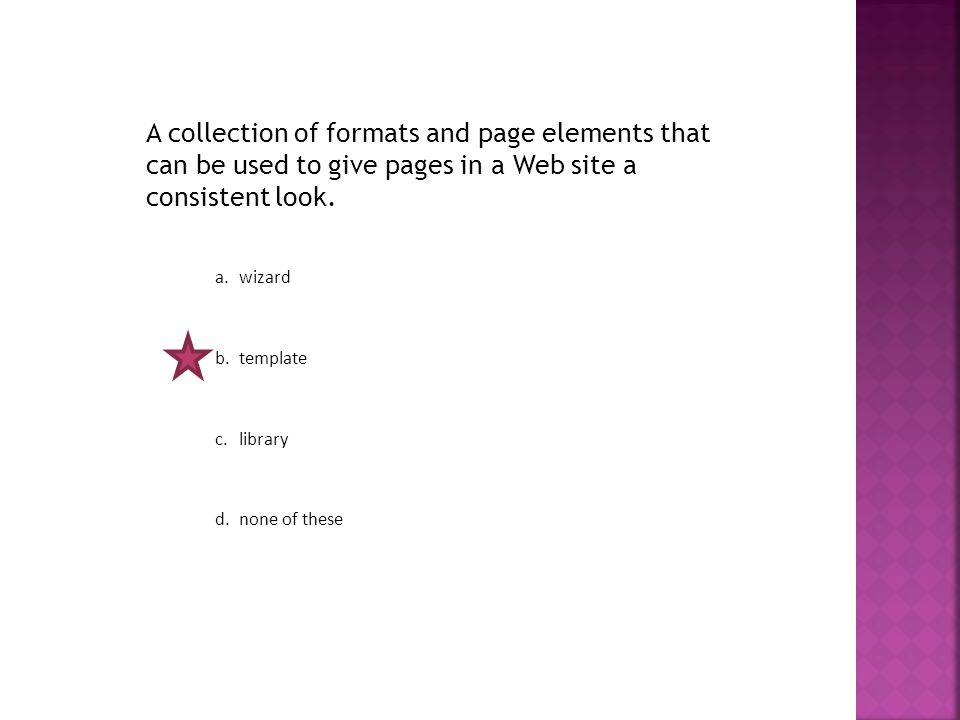 A collection of formats and page elements that can be used to give pages in a Web site a consistent look.