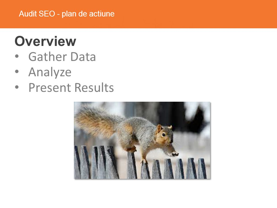 Audit SEO - plan de actiune Overview Gather Data Analyze Present Results