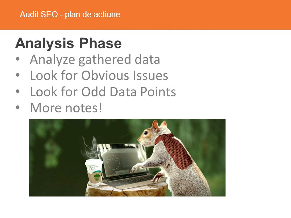 Audit SEO - plan de actiune Analysis Phase Analyze gathered data Look for Obvious Issues Look for Odd Data Points More notes!