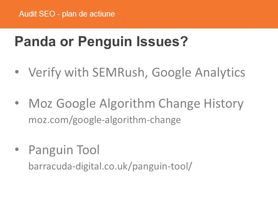 Audit SEO - plan de actiune Panda or Penguin Issues.