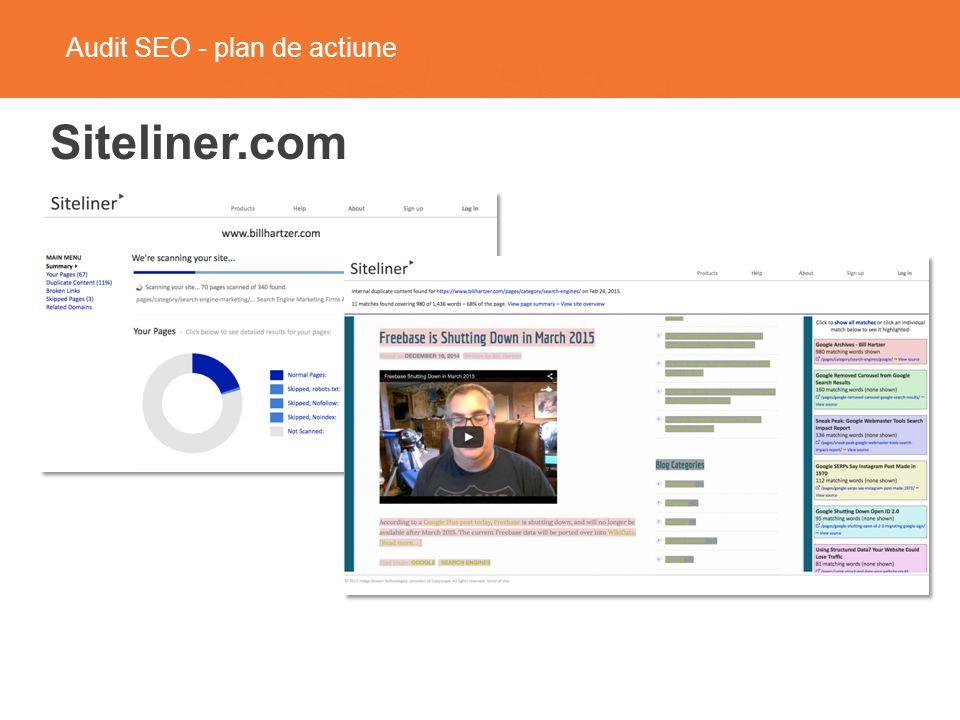 Audit SEO - plan de actiune Siteliner.com
