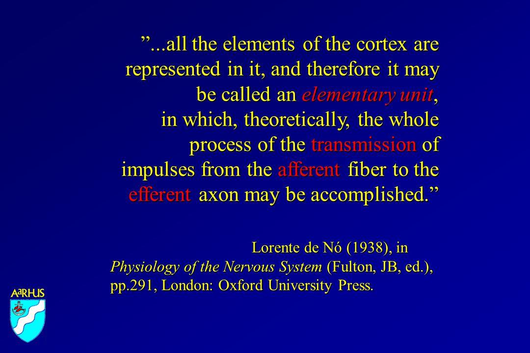 Hevner & Wong-Riley (1992) J Comp Neurol. 326: 451-469