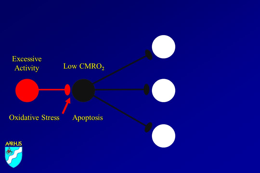Low CMRO 2 ExcessiveActivity Oxidative Stress Apoptosis