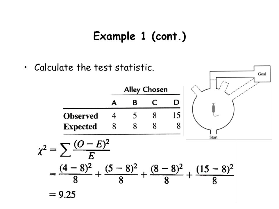 Example 1 (cont.) Calculate the test statistic.