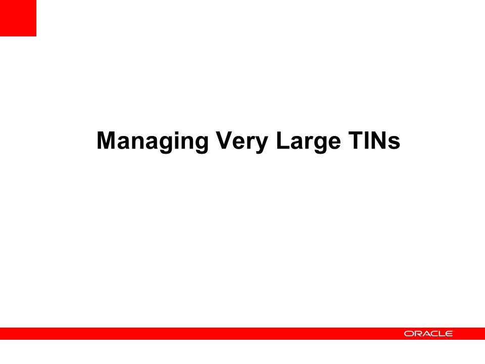 Managing Very Large TINs