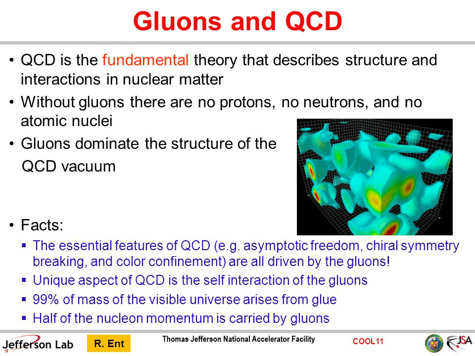 COOL11 Gluons and QCD QCD is the fundamental theory that describes structure and interactions in nuclear matter Without gluons there are no protons, n