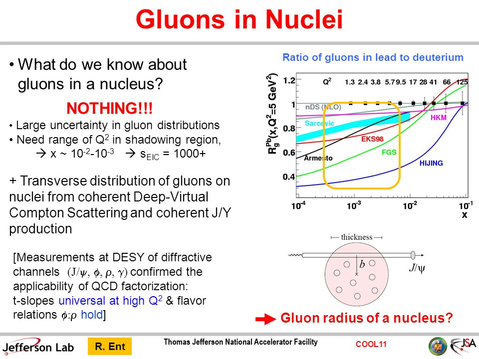 COOL11 Gluons in Nuclei NOTHING!!! Large uncertainty in gluon distributions Need range of Q 2 in shadowing region,  x ~ 10 -2 -10 -3  s EIC = 1000+