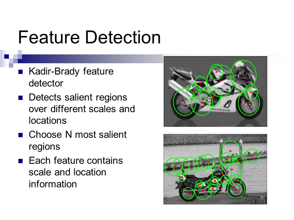 Feature Detection Kadir-Brady feature detector Detects salient regions over different scales and locations Choose N most salient regions Each feature contains scale and location information