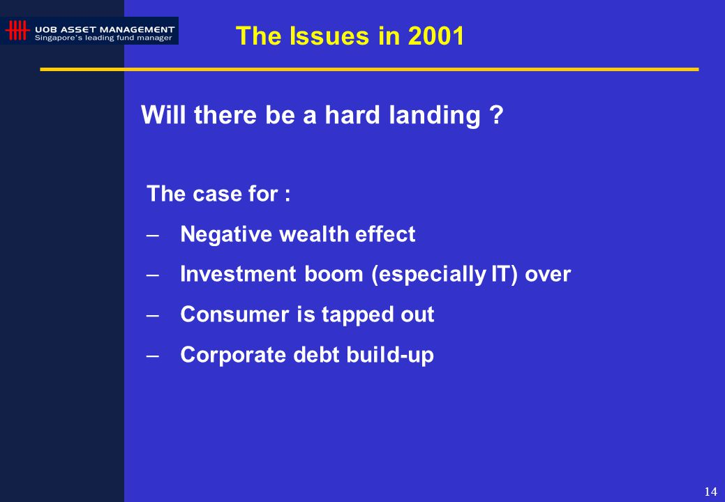 14 The Issues in 2001 Will there be a hard landing .