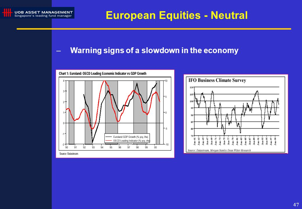 47 European Equities - Neutral –Warning signs of a slowdown in the economy