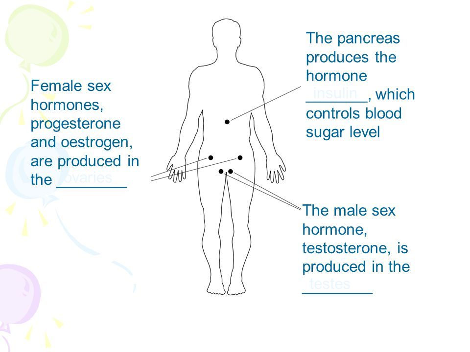 Female sex hormones, progesterone and oestrogen, are produced in the ________ The male sex hormone, testosterone, is produced in the ________ The pancreas produces the hormone _______, which controls blood sugar level ovaries testes insulin