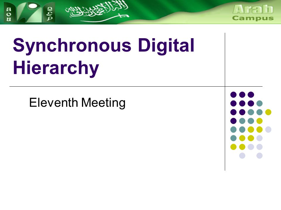 Synchronous Digital Hierarchy Eleventh Meeting