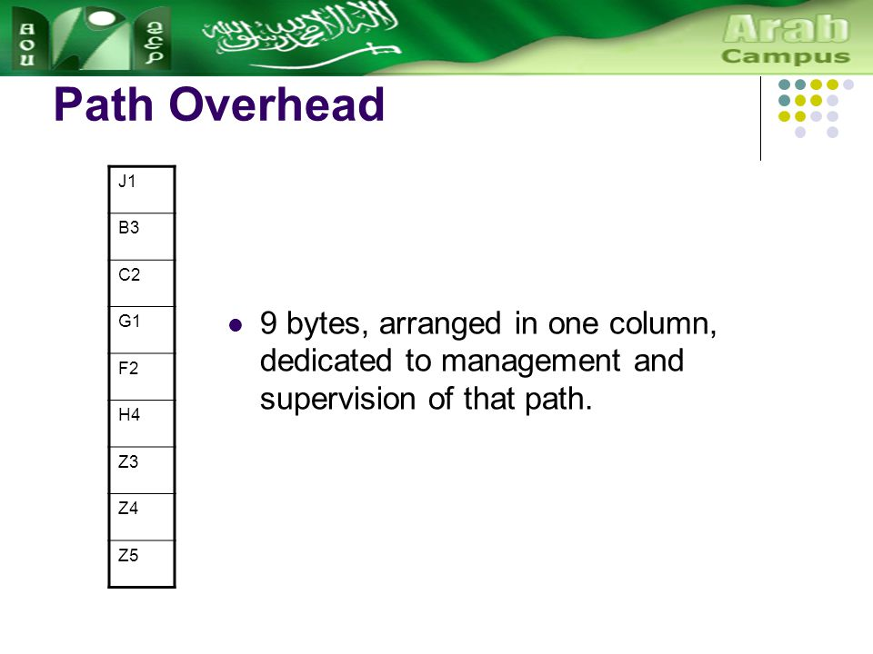 Path Overhead J1 B3 C2 G1 F2 H4 Z3 Z4 Z5 9 bytes, arranged in one column, dedicated to management and supervision of that path.