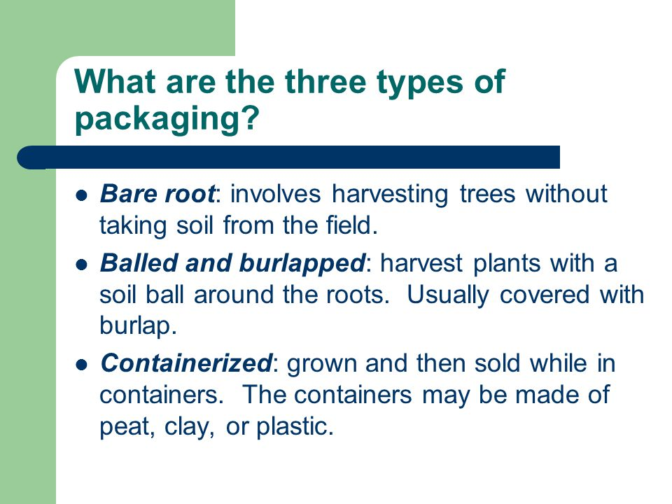 What are the three types of packaging.