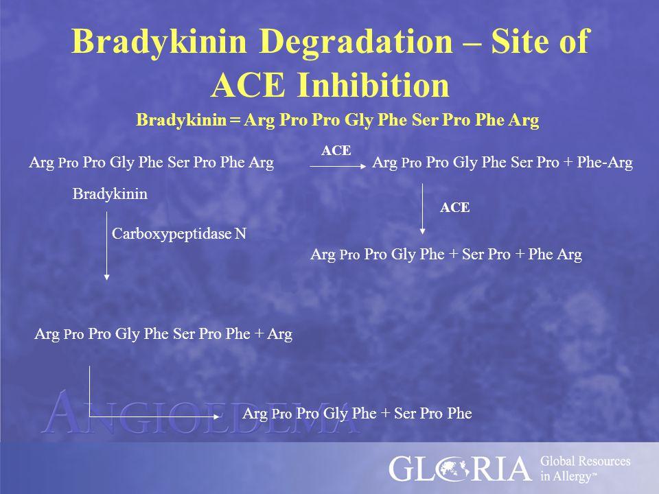Bradykinin Degradation – Site of ACE Inhibition Bradykinin = Arg Pro Pro Gly Phe Ser Pro Phe Arg Arg Pro Pro Gly Phe Ser Pro Phe Arg ACE Arg Pro Pro Gly Phe Ser Pro + Phe-Arg Bradykinin Carboxypeptidase N Arg Pro Pro Gly Phe Ser Pro Phe + Arg Arg Pro Pro Gly Phe + Ser Pro Phe ACE Arg Pro Pro Gly Phe + Ser Pro + Phe Arg