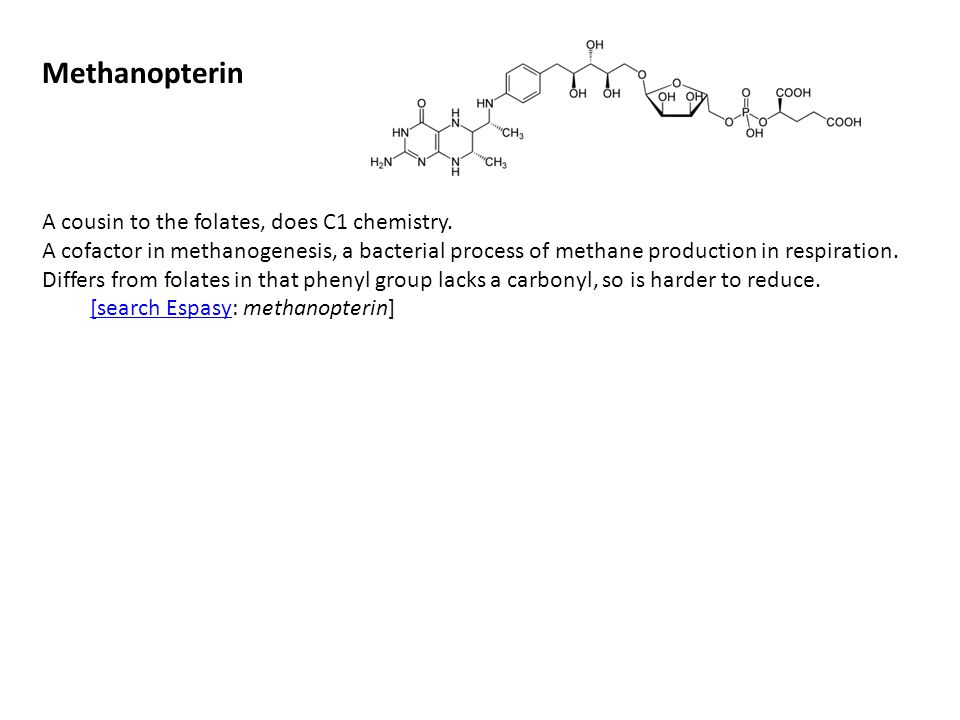 Methanopterin A cousin to the folates, does C1 chemistry.