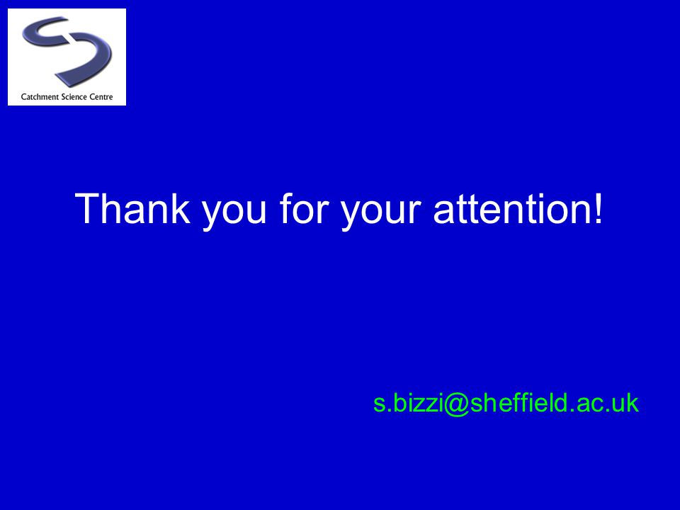 Thank you for your attention! s.bizzi@sheffield.ac.uk