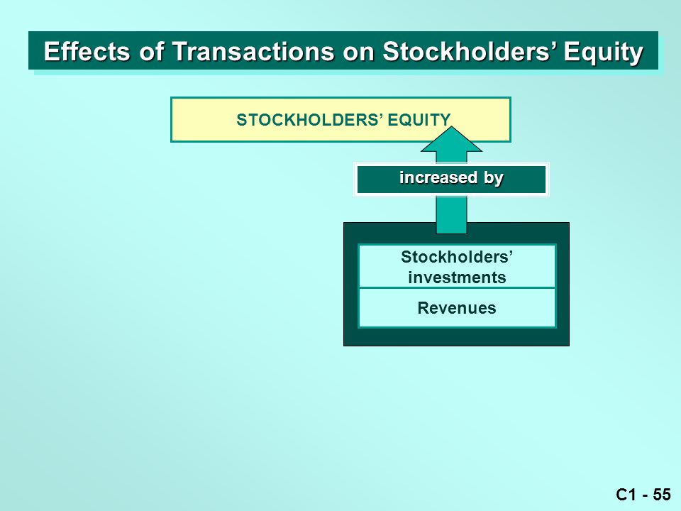 C1 - 55 STOCKHOLDERS' EQUITY increased by Stockholders' investments Revenues Effects of Transactions on Stockholders' Equity