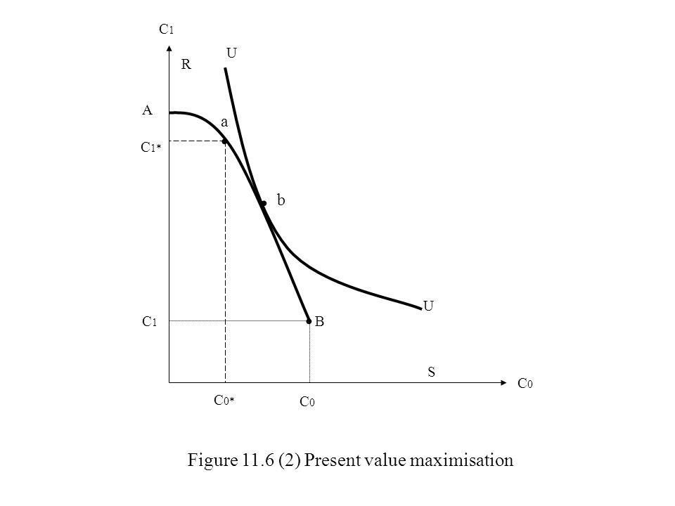 C1C1 C0C0 U U Figure 11.6 (2) Present value maximisation b a A C 1* C1C1 R B C 0* C0C0 S
