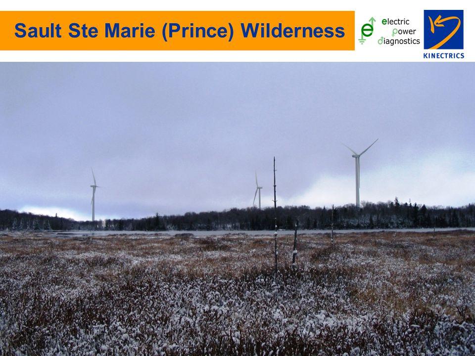 Sault Ste Marie (Prince) Wilderness
