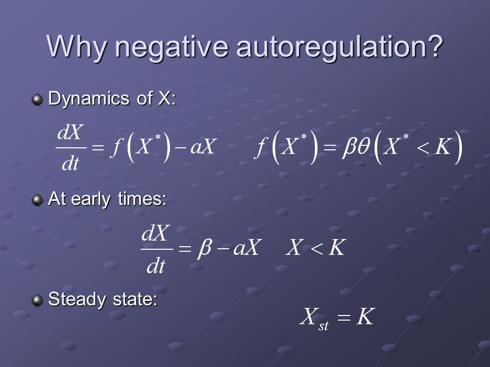 Why negative autoregulation? Dynamics of X: At early times: Steady state: