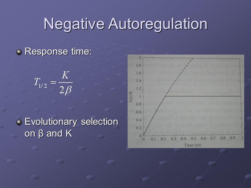 Negative Autoregulation Response time: Evolutionary selection on β and K