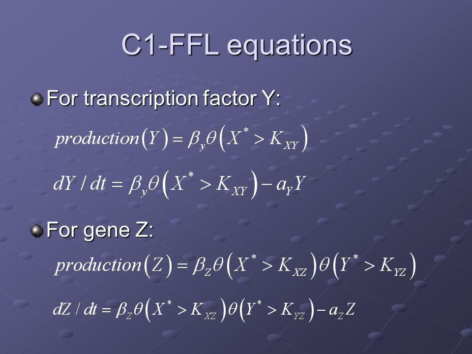 C1-FFL equations For transcription factor Y: For gene Z: