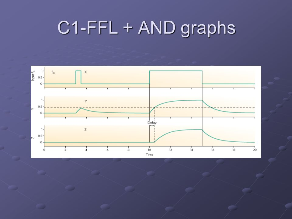 C1-FFL + AND graphs
