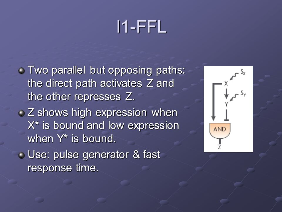 I1-FFL Two parallel but opposing paths: the direct path activates Z and the other represses Z. Z shows high expression when X* is bound and low expres