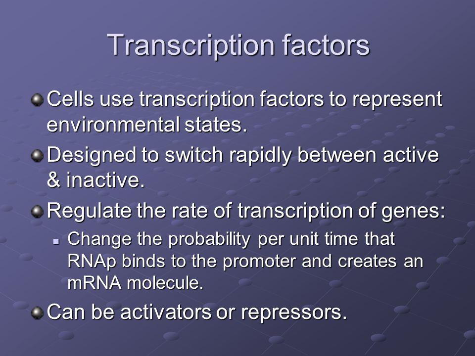 Transcription factors Cells use transcription factors to represent environmental states.