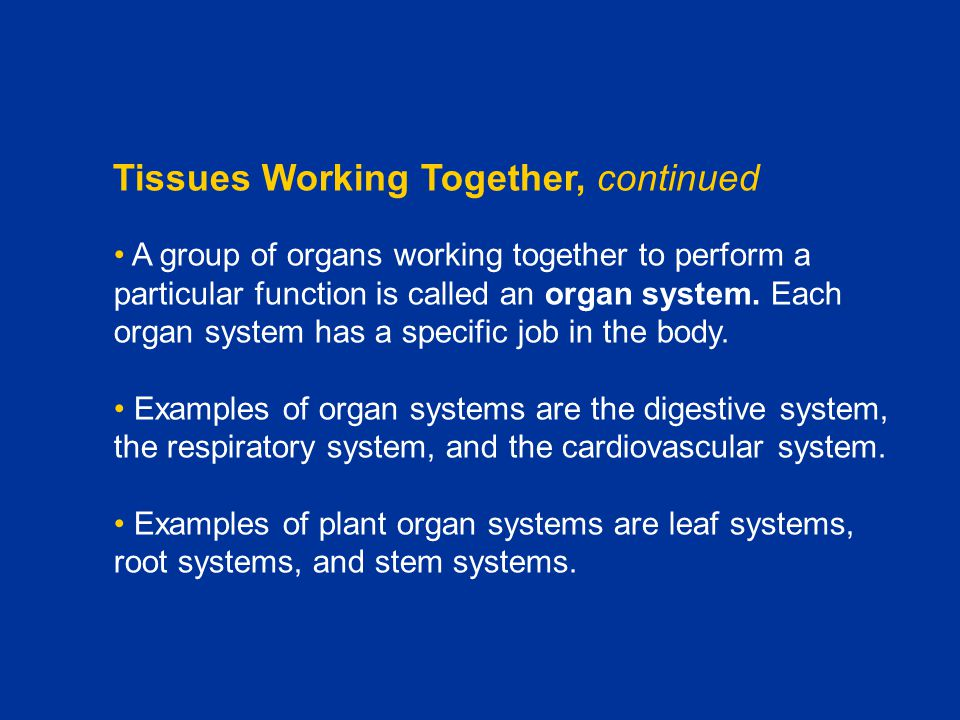 Tissues Working Together, continued A group of organs working together to perform a particular function is called an organ system. Each organ system h