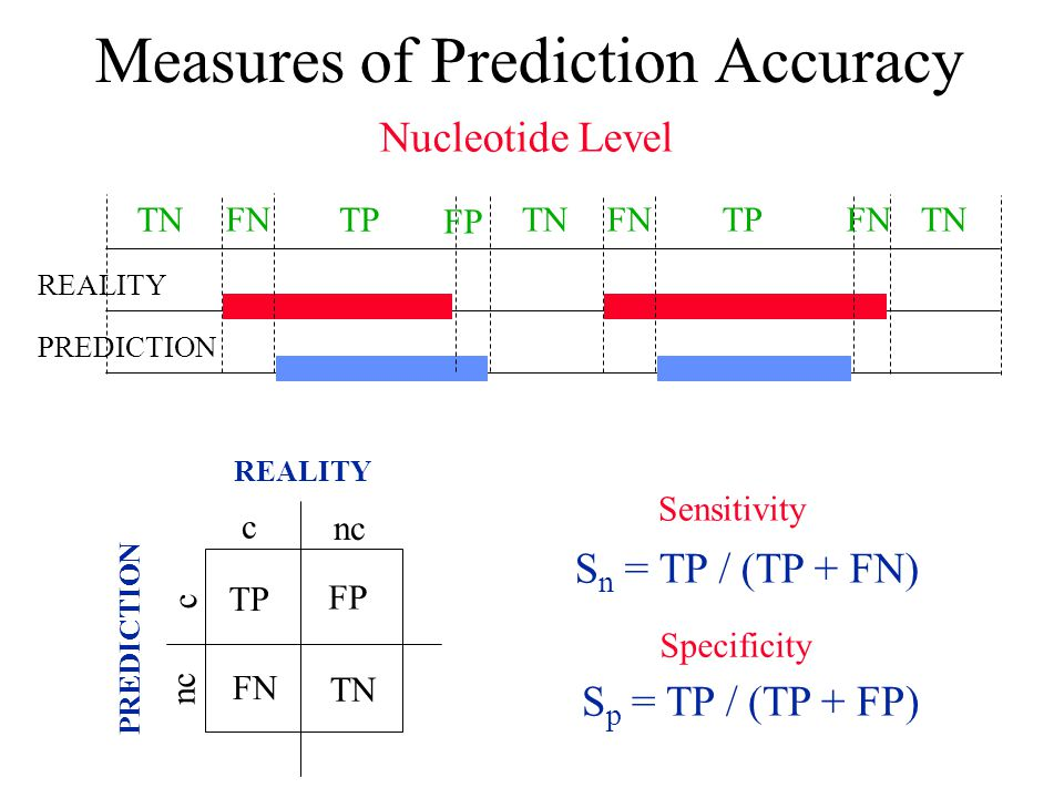 Measures of Prediction Accuracy TN FP FNTN TPFN TP FN REALITY PREDICTION REALITY TP FN TN FP c c nc S n = TP / (TP + FN) S p = TP / (TP + FP) Sensitivity Specificity Nucleotide Level