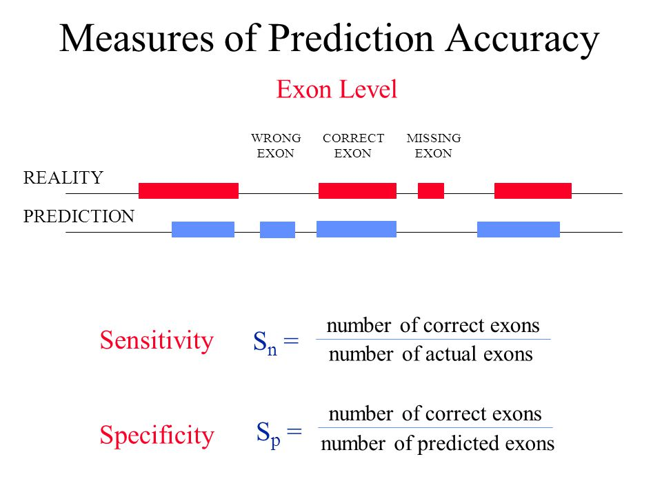 Measures of Prediction Accuracy REALITY PREDICTION Exon Level WRONG EXON CORRECT EXON MISSING EXON S n = Sensitivity number of correct exons number of