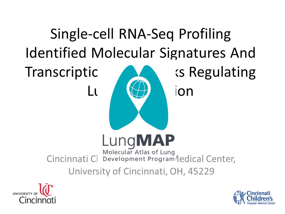 Single-cell RNA-Seq Profiling Identified Molecular Signatures And Transcriptional Networks Regulating Lung Maturation Yan Xu Sept, 8, 2014 Cincinnati Children's Hospital Medical Center, University of Cincinnati, OH, 45229
