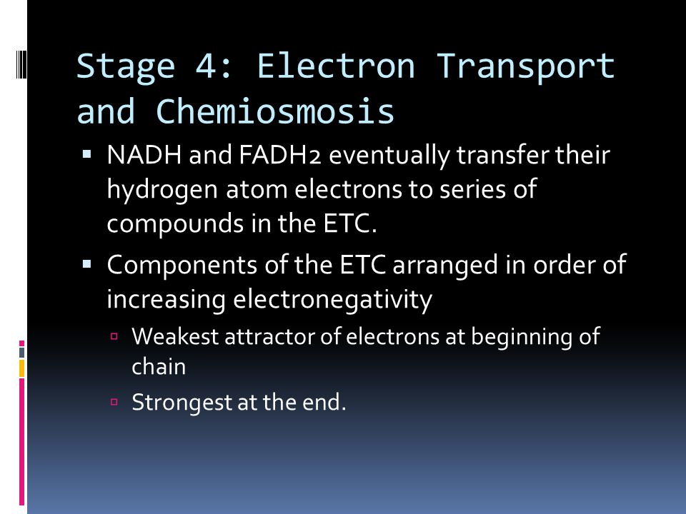 Electrochemical Potential Energy  Type of energy stored by a battery  Caused by accumulation of charged objects  The energy becomes stored in the electrochemical gradient and will be used to power ATP synthesis in the next part of the process...