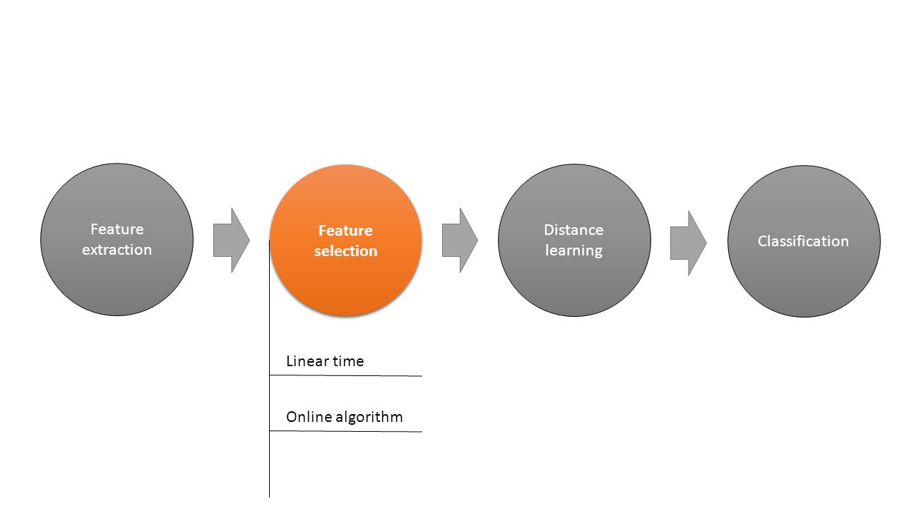 Feature selection Distance learning Classification Feature extraction Linear time Online algorithm