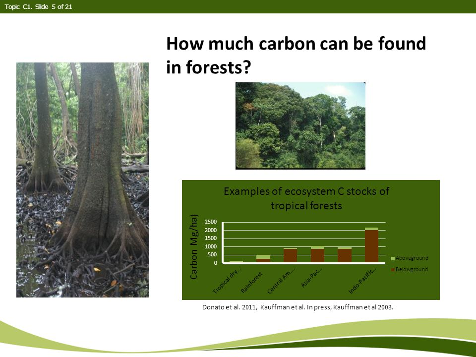 Topic C1. Slide 5 of 21 How much carbon can be found in forests.