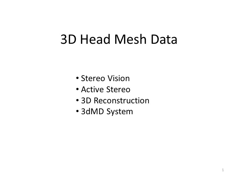 3D Head Mesh Data Stereo Vision Active Stereo 3D Reconstruction 3dMD System 1