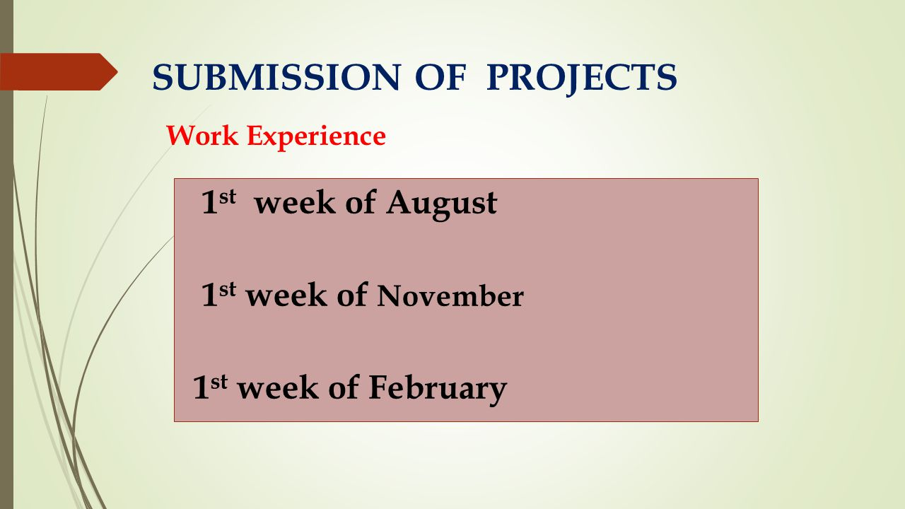 1 st week of August 1 st week of November 1 st week of February SUBMISSION OF PROJECTS Work Experience