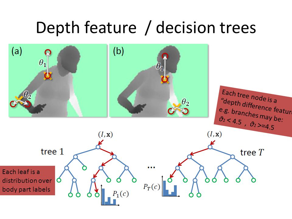 "Depth feature / decision trees Each tree node is a ""depth difference feature"" e.g. branches may be: θ 1 = 4.5 Each leaf is a distribution over body pa"
