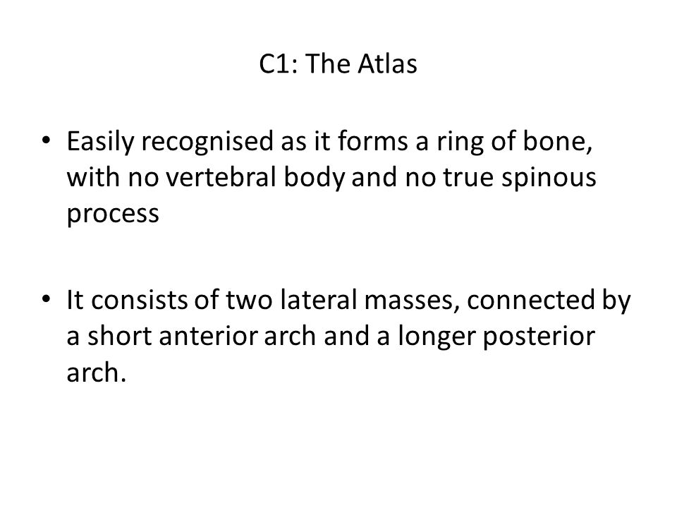 C1: The Atlas Easily recognised as it forms a ring of bone, with no vertebral body and no true spinous process It consists of two lateral masses, conn