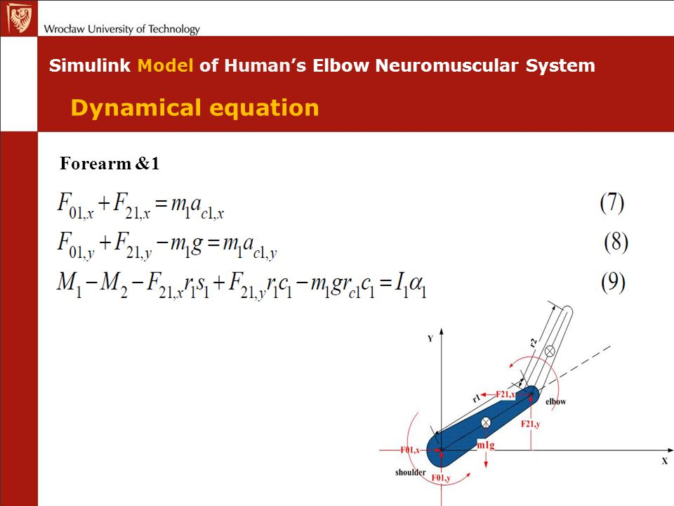 Simulink Model of Human's Elbow Neuromuscular System Dynamical equation Forearm &1