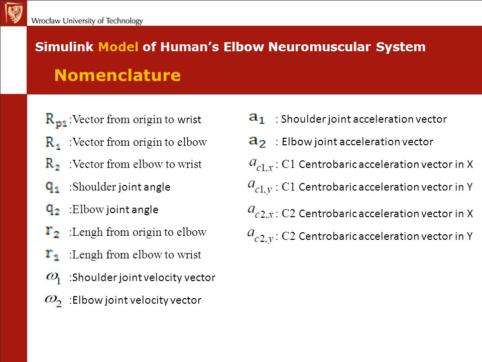 Nomenclature Simulink Model of Human's Elbow Neuromuscular System :Vector from origin to wrist :Vector from origin to elbow :Vector from elbow to wrist :Shoulder joint angle :Elbow joint angle :Lengh from origin to elbow :Lengh from elbow to wrist : Shoulder joint velocity vector : Elbow joint velocity vector : Shoulder joint acceleration vector : Elbow joint acceleration vector : C1 Centrobaric acceleration vector in X : C1 Centrobaric acceleration vector in Y : C2 Centrobaric acceleration vector in X : C2 Centrobaric acceleration vector in Y