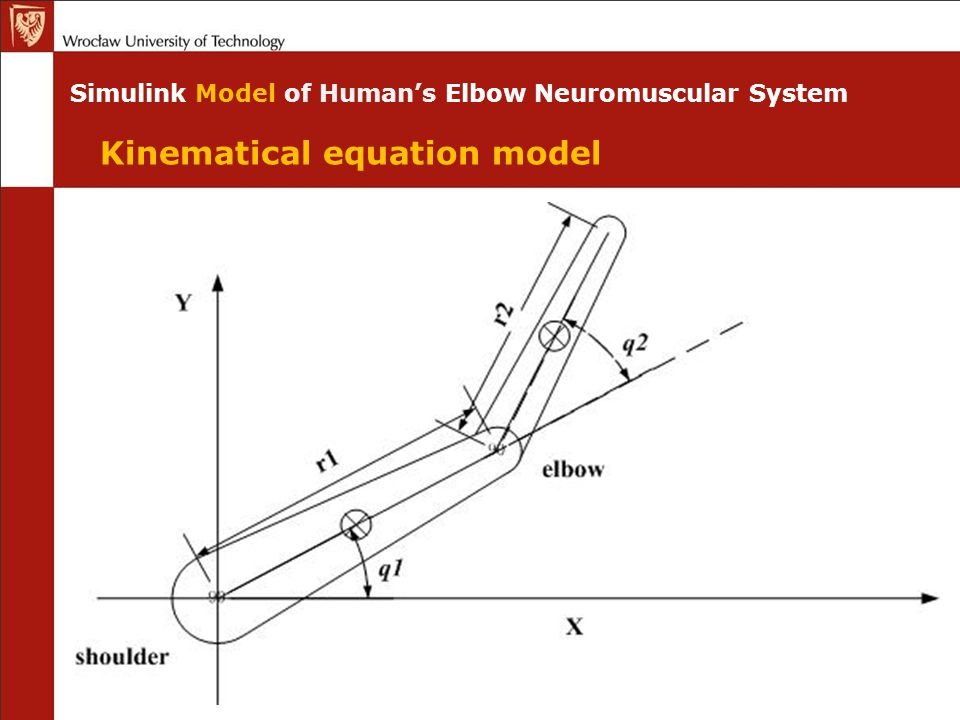 Simulink Model of Human's Elbow Neuromuscular System Kinematical equation model