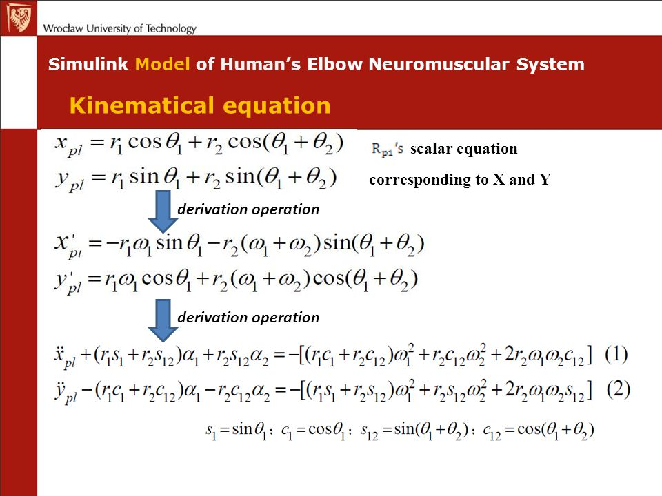 Simulink Model of Human's Elbow Neuromuscular System scalar equation derivation operation corresponding to X and Y derivation operation Kinematical equation