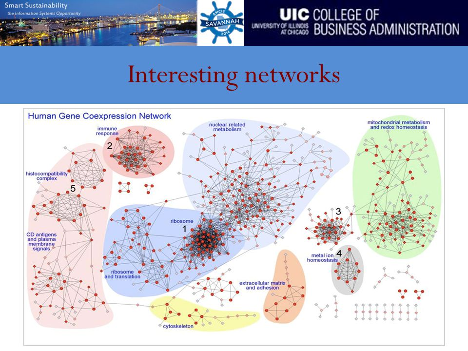 Interesting networks